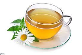 mayorista de té